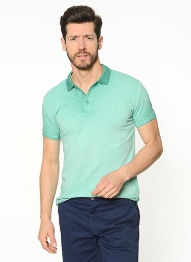 Polo Yaka Tişört-Avva